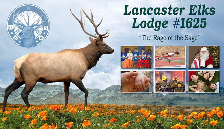 Splash Image for Elks Lodge 1625